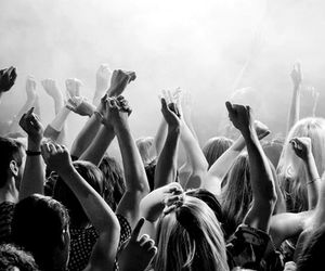 concert, disco, and life image
