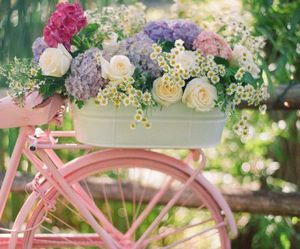 bike, flowers, and sweet image
