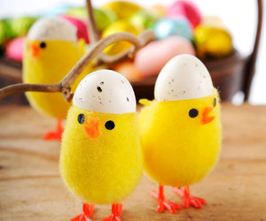 chickens, easter, and eggs image