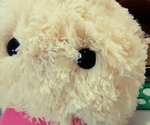lol, peluche, and league of legends image