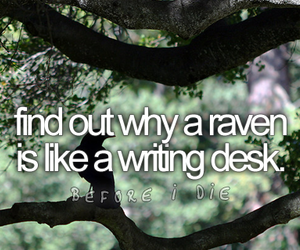 alice in wonderland, before i die, and quote image