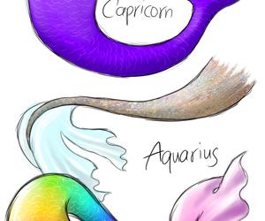 aquarius, capricorn, and colors image