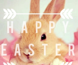 easter, happy, and bunny image
