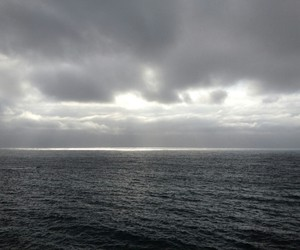 grunge, pale, and sea image