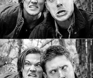 actors, Jensen Ackles, and jared padalecki image