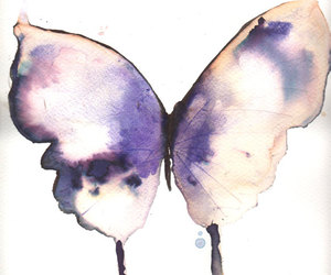 art, butterfly, and draw image