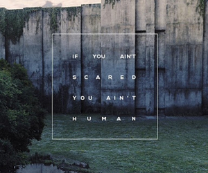 maze runner and quote image