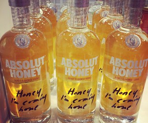 absolut, absolut vodka, and honey image