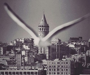 :3, and, and istanbul image