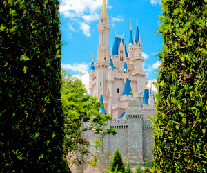 disney, mickey mouse, and orlando image