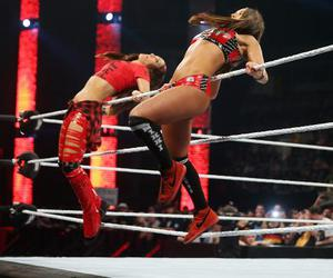divas, tag team, and the bella twins image