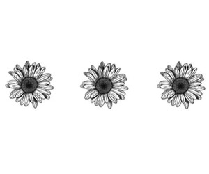 overlay, flowers, and transparent image