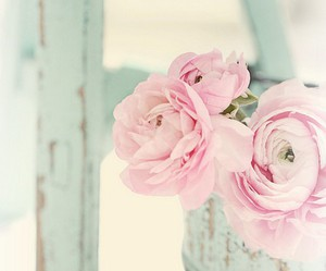 adorable, flowers, and life image
