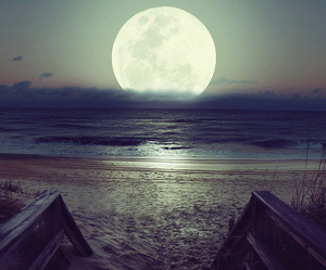 beach, landscape, and moon image