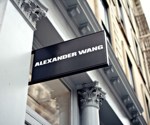 fashion, alexander wang, and luxury image