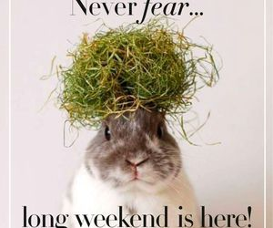easter and weekend image