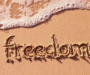 freedom, beach, and sea image