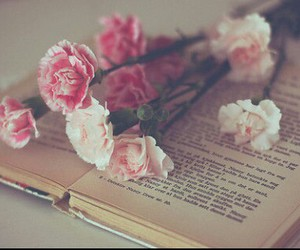 book, reading, and rose image