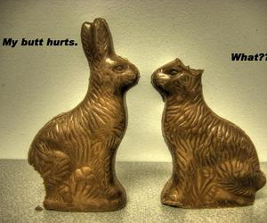 easter, funny, and happy easter image