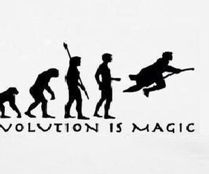 harry potter, magic, and evolution image