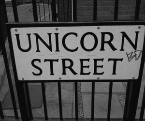 unicorn, street, and black and white image