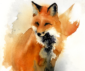 fox and watercolor image