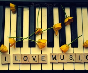 music, piano, and flowers image