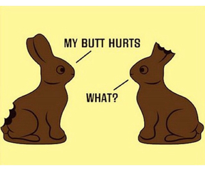 funny, easter, and bunny image