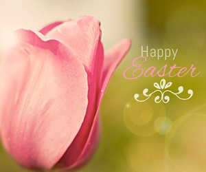easter, flower, and happy image