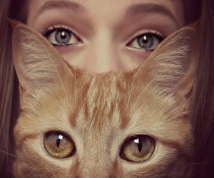 cat, girl, and eyes image