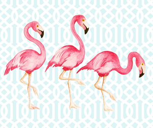 flamingo, background, and pink image