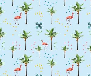 background, animal, and flamingo image