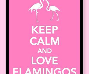 flamingo, keep calm, and pink image