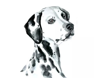 art, dog, and watercolor image