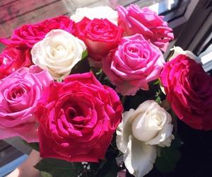 elegant, flower, and girly image