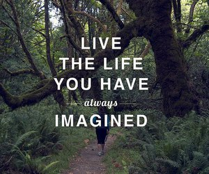 quote, life, and imagine image