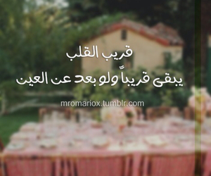 love, عربي, and words image