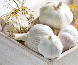 food, garlic, and foodstyling image