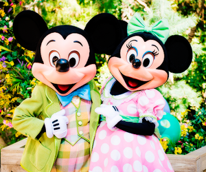 disney, photography, and quality image