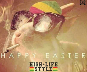 easter, happy easter, and high image