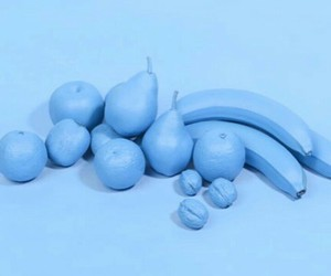 blue and fruit image