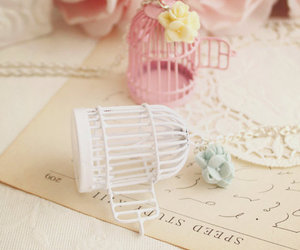 cages and cute image
