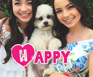 dog, easter, and happy image