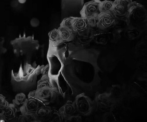 skull, candle, and rose image