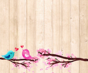 wallpaper and birds image