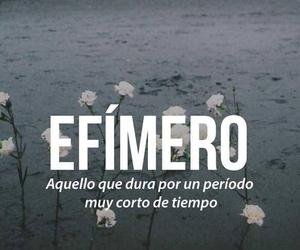 efimero, words, and efímero image