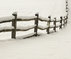 country, pennsylvania, and fence image