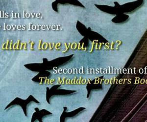 book, beautiful redemption, and maddox brothers image