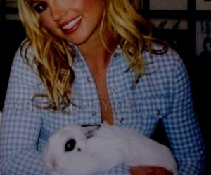 britney spears and rabbit image