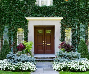 house, beautiful, and door image